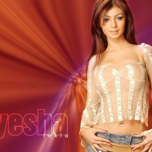 free download hd wallpapers of ayesha takia
